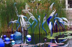 Dale Chihuly NY Botanical Gardens