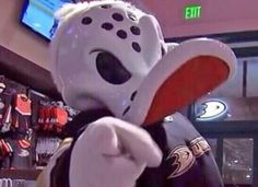 #1 NHL Mascot - Anaheim Ducks - Wild Wing