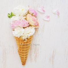 Floral Ice Cream Cone - Ranunculus - Art, Floral Photography, Flower Print, Home Decor, Whimsical, Inspirational, Fine Art Print - 8x8
