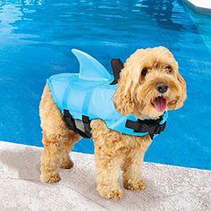 Sea Squirts Shark Fin Doggie Jacket | ThinkGeek