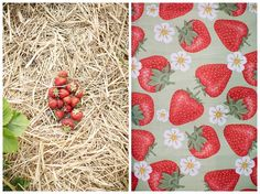 Mit Mutti beim Erdbeerpflücken // Portrait » Dear Sally Photography