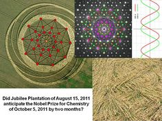 Crop Circle News Crop Circles, Naughty Cross Stitch, We Are Golden, Android Codes, Unexplained Phenomena, Conscience, Nobel Prize, Space Exploration, Conspiracy