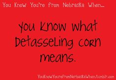 You know you're from NE...