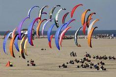 Beach kite race Rømø Denmark