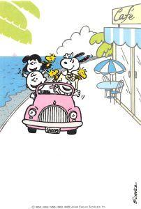 Creator & Artist Charles M. Charlie Brown Et Snoopy, Charlie Brown Quotes, Images Snoopy, Snoopy Pictures, Snoopy Cartoon, Peanuts Cartoon, Peanuts Gang, Snoopy Et Woodstock, Happy Cafe