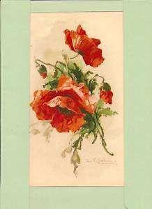 BOTANICAL ANTIQUE PRINT Catherine Klein FLOWER   eBay
