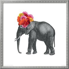 Elephant by John Murphy. Framed print from Art.com, $214.99 #jonathanadler