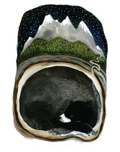 Bear Mountain: by Diana Sudyka. This could be a great connection to my 4th grade Bear art projects.