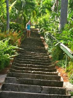 99 Steps St Thomas-take a cab from the harbour to Black Beard Castle, Oh ! Vacation Places, Dream Vacations, Vacation Spots, Places To Travel, St Thomas Virgin Islands, Us Virgin Islands, Caribbean Vacations, Caribbean Cruise, St Thomas Vacation