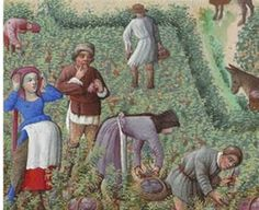 a nice picture about working commoners. yet I'm not sure about the woman on the left, her clothes are too vivid for this class and I don't think you work on the fields in your sunday's best. is it some kind of idealised depiction? any suggestions?    In: Robinet Testard, Trés riches heures (aka. Hour Book of Duke of Berry)
