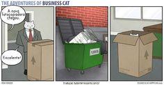 se-meu-chefe-fosse-um-gato-1