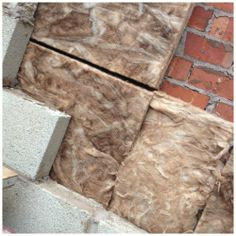 Kitchen Extension - exterior cavity wall insulation