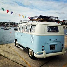 VW Dougal at the sea harbour enjoying the view.