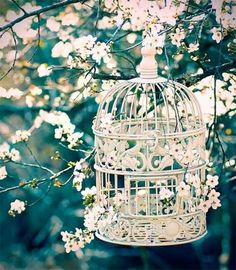 Vintage Bird Cages spray paint baby blue hang up on new apartment with lightbulbs inside