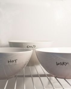 Science Fair: Does Hot Water Freeze Faster Than Cold Water?