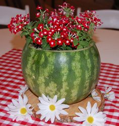 Watermelon planter on wood round and gingham square with scattered daisies for table centerpiece