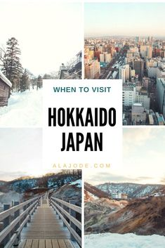 Hokkaido, Japan, is a magical place and changes with the seasons - so when is the best time to visit Hokkaido? Read this blog post to see when I think the best month to visit Hokkaido is and why I think everyone should experience a Hokkaido winter.