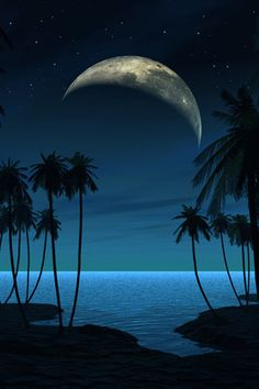 ✯ Beach at Night. Love the beach at night, especial when there is a full moon. Beautiful Moon, Beautiful World, Beautiful Places, Cool Photos, Beautiful Pictures, Beach At Night, Ocean At Night, Shoot The Moon, Beach Scenes