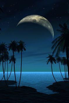 ✯ Beach at Night