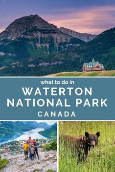 Why Waterton Lakes National Park is One of the Best Places to Visit in Canada. If you're planning a visit to Canada, be sure to add Waterton Lakes National Park to your itinerary. It is truly a beautiful place. Source by WanderCrew beauty Canada National Parks, Parks Canada, Glacier National Park Canada, Best Places To Travel, Cool Places To Visit, Quebec, Montreal, Vancouver, Alberta Travel