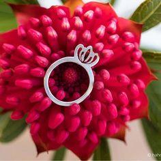 2D Protea ring Minimalist Jewelry, 2d, Jewellery, Rings, Silver, Jewelery, Money, Jewlery, Ring