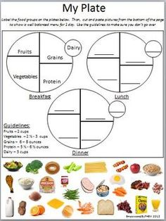 "My Plate Cut and Paste - A worksheet on the new USDA food recommendations. After a lesson on the ""Food Plate"" students can use this worksheet to plan out a well balanced menu for one day."