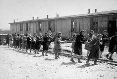 Jewish women at forced labor pulling hopper cars of quarried stones along Industry Street in the Plaszlow concentration camp, 1944. Photo credit: Prof. Leopold Pfefferberg-Page Collection, courtesy of USHMM Photo Archives