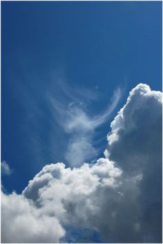 Bible verses about the Second Coming of Christ on BibleVersesAbout.Org.  This excellent photo of a Cloud Shape of a praying angel was captured by Sirsalis Photography..