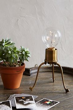 Volta Desk Lamp #anthropologie