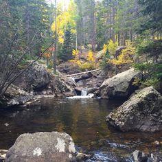 Fall colors off the Hesse trail, Eldora, CO #naturePhotography #autumn stream