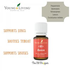 Raven essential oil by Young Living for Respiratory System Support. Learn all about it at www.theoildropper.com