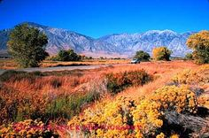 Owens Valley | moving car on highway 395 Owens Valley California Stock Photo 2154