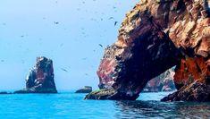 Felsküste der Ballestas-Inseln (© Laser143, iStockphoto.com / Chamäleon)