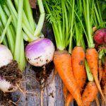 Jardinage: Les meilleurs conseils pour réussir votre potager
