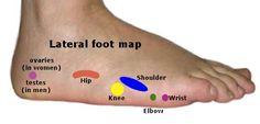 Reflexology Chart - Lateral Foot Map