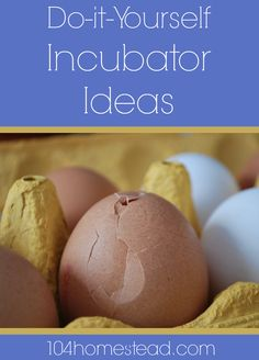 Do-it-Yourself Incubator Ideas