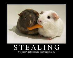 Ten Commandment 8 Do not steal