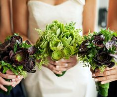 Popular succulent and ivy berry bouquets Pollon Flowers