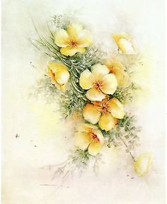 #87 California Poppy China Painting Study by Sonie Ames 1981
