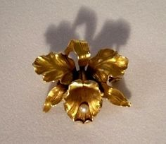 14k gold Art Nouveau Whiteside & Blank flower Pin w seed Pearl