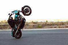 Nick Leonetti Harley Wheelies