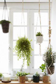 Reconnect with nature by creating a living display in a window. Grow a window garden at different levels using macramé hangers, like Andreia's in Portugal.
