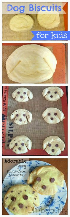 Biscuits shaped like puppies www.diybeautify.com Your kids will flip over how CUTE these biscuits are with their chocolate chip eyes and noses...plus they are so easy to make!