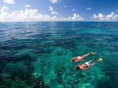 Picture of snorkelers in the Keys Marine Sanctuary, Florida