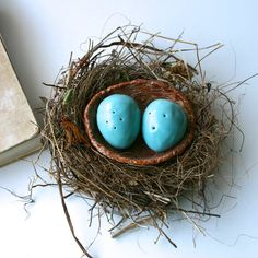 Bird Nest with Eggs - Salt & Pepper Shakers with a Tray -  Robins Egg Blue Twig Brown - Kitchen Table Home Decor - Ready to Ship on Etsy, $59.50