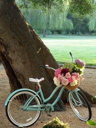 Blu vintage bike- I have an Electra like this in mint green and it would look amazing with flowers in the basket!