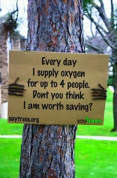 Save trees :D