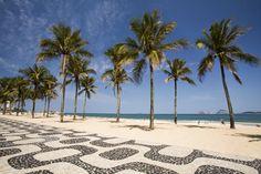 Brazil Beaches   Brazil Image - Palm trees, Ipanema Beach, Brazil - Lonely Planet
