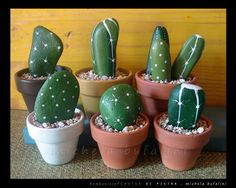 The cutest cactus plants in the world. NO instruction but looks like rocks painted. Great for those none green thumbs  :)