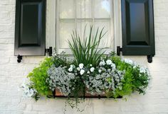 Come on in and check out these Beautiful DIY Window Box Ideas with Curb Appeal. It is simply amazing what a simple Window Box can do for your Home! Winter Window Boxes, Window Box Plants, Window Box Flowers, Balcony Flowers, Balcony Plants, Window Planter Boxes, Flower Boxes, Window Box Diy, Planter Ideas